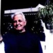 Mr.  Ernest M. Megginson Jr.