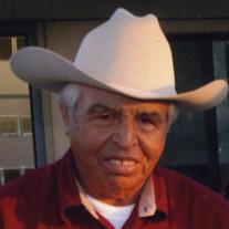 Raul  Godinez Gonzalez
