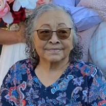 Magdalena Rojas Taijeron