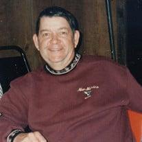 David Roy Plasters