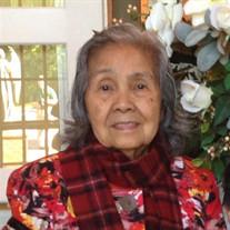 Teresa A. Toledo