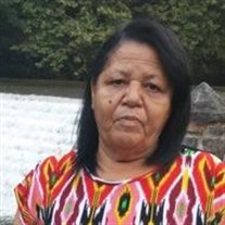 Maria D. Castro-Gonzalez