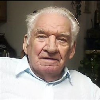 Raymond H Schmidt