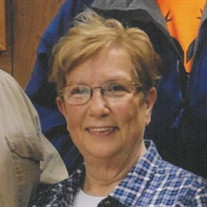 Susan Ann Teichman