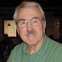 Mr David Bruce Polan
