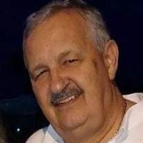 Michael S. Godek