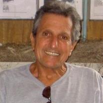 ROBERT M ZEVE