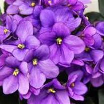 Violet Capdepon Ladner