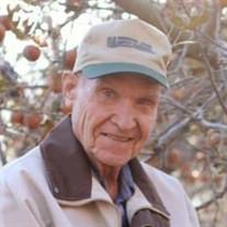 Robert E. McNew Sr.