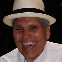 Pedro P Campos