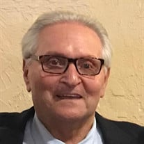 Robert B Swidler