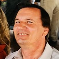 Albert Bolle