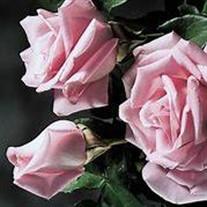 """Rosemary """" Rosie"""" E. Meister"""
