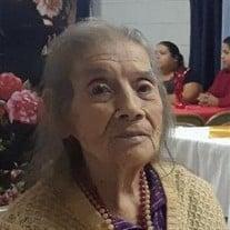 Elisa Chapa