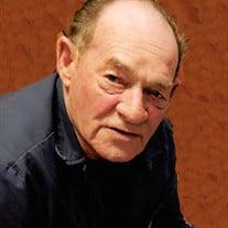 Dennis H Murphy