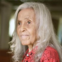 Joyce Ann  Scott Beamer