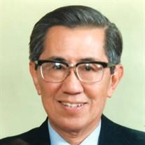 Professor Sein Lin