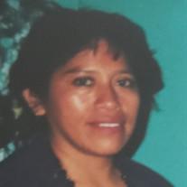 Gloria Lopez Velasquez