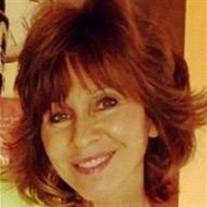 Mary Sue Terrasi