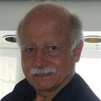 Lee Arnold Briggs
