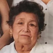 Mrs. Julia  Amador Reyes