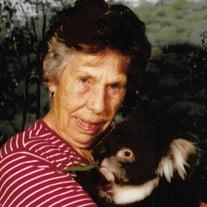 Sue Wingfield