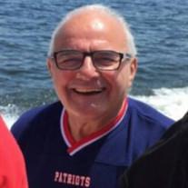 Mr. David J. Palumbo