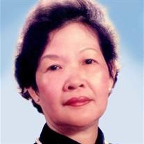 Phung Phi Ngo