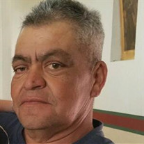 Jose  Luis Lozano-Maravillas