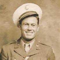 Raymond J. Chapman
