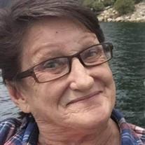 Donna Sue Perkins