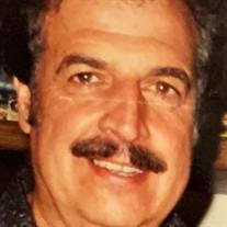 Gary F Vecchio
