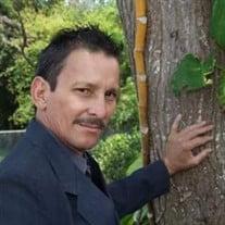 Pedro Mangual Morales