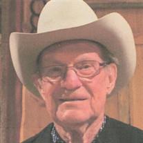 Paul Wayne  Williams  Sr.