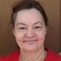Diana Lynn (Nohel) Jessup
