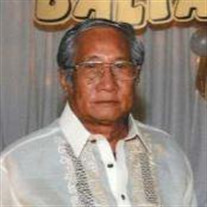 Mr.  Gerardo Long-gat