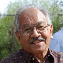 Satish Chandra Ph.D.