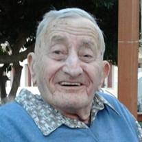 Demetrios N. Spetsiotis