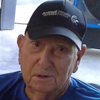 Robert E Nagel