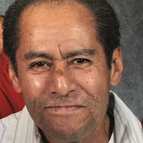Francisco Ybarra
