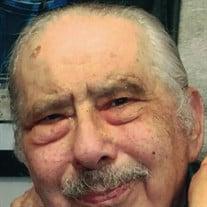 Mr. Bernard Feldman