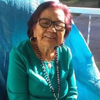 Maria Guadalupe  Valdivia