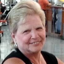 Marcie Ann  Meixner