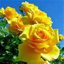 Sharon R  Kline Obituary - Visitation & Funeral Information