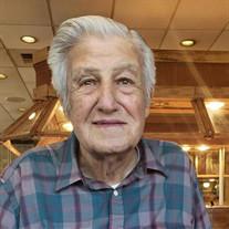 Mr. Carl Elam