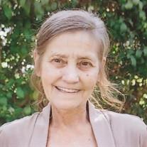 Vicki Lee Swantek