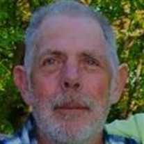Douglas R Stephens
