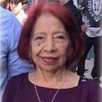 Maria Victoria Rodriguez Ramirez