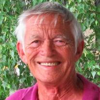 Allan Lennart Geslin