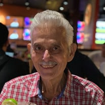 Raul A. Pena